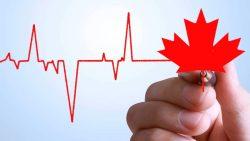 افزایش کارآفرینی در کانادا توسط مهاجرین